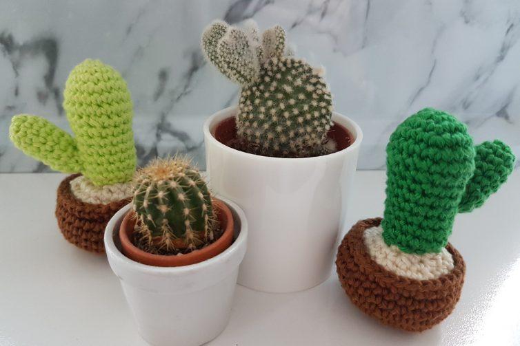 Maak Nu Je Eigen Gehaakte Cactussen Met Dit Haakpatroon